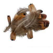 No Name - Paquet de Plumes de faisan Naturelles 6 à 9cm