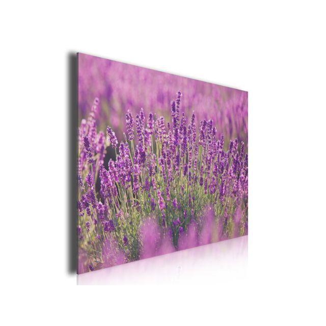 Hexoa Tableau Fleurs Lavande En Provence, 80x50cm