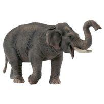 Collecta - Figurine Eléphant d'Asie