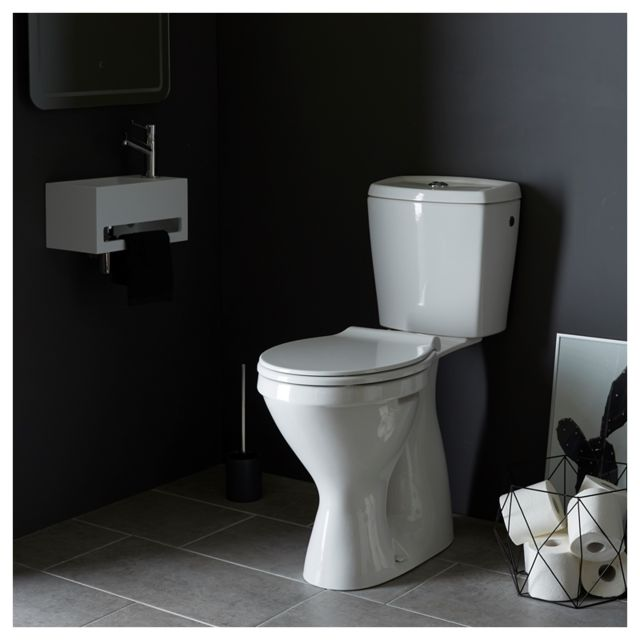 2d66827aac0ad Wc sortie verticale - catalogue 2019 -  RueDuCommerce - Carrefour