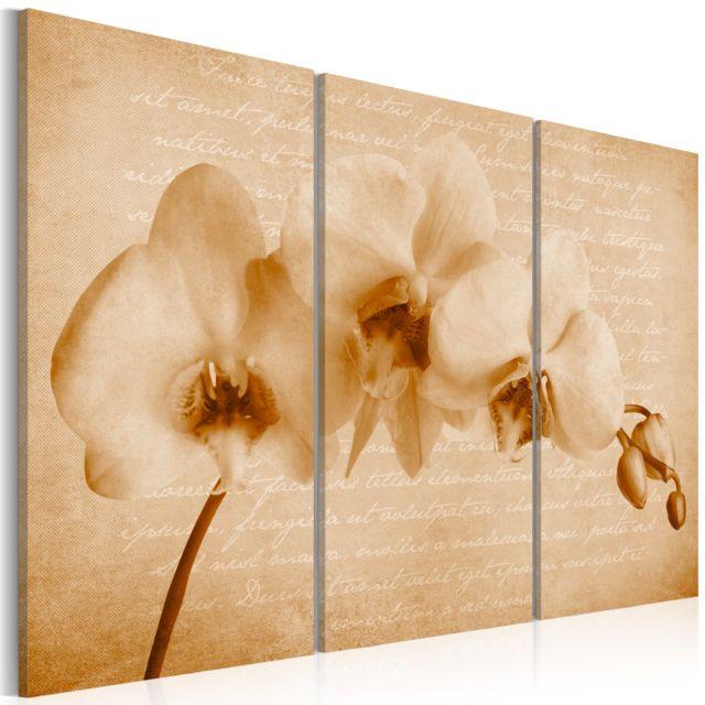 bimago tableau orchid e vintage pas cher achat vente tableaux peintures rueducommerce. Black Bedroom Furniture Sets. Home Design Ideas