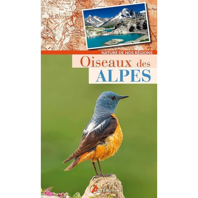 Artemis - Oiseaux des Alpes
