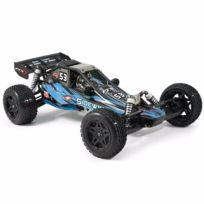 FTX - Sidewinder 2WD Dune Buggy 1/8 RTR FTX5548