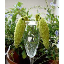 """Willemse France - 2 """"Plantes aux perruches"""" - Le paquet de 2 en godets de 7 cm"""