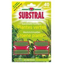Substral - Bâtonnet nutritif plantes vertes x40