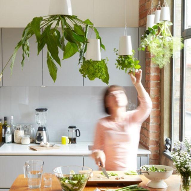 Décoration de maison Pots de fleurs en plastique suspendus jardin ciel  planteur à l\'envers fleur plantes vertes pot, taille: 13 x 9,5 x 9,5 cm s,  ...
