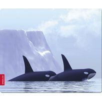 SPEEDLINK - SL-6242-ORCA