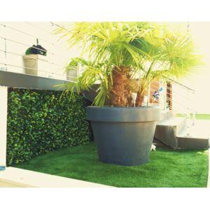 euro castor green haie de laurier en treillis extensible pas cher achat vente haie. Black Bedroom Furniture Sets. Home Design Ideas