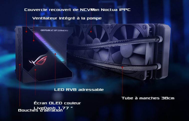 10794985422878.jpg [MS-15481123719086096-0083349893-FR]/Catalogue produits RDC et GM / Online