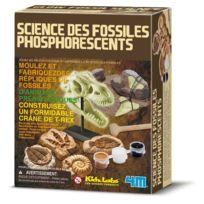 4M - Kit Dam/pour enfant Science des fossiles phosphorescents