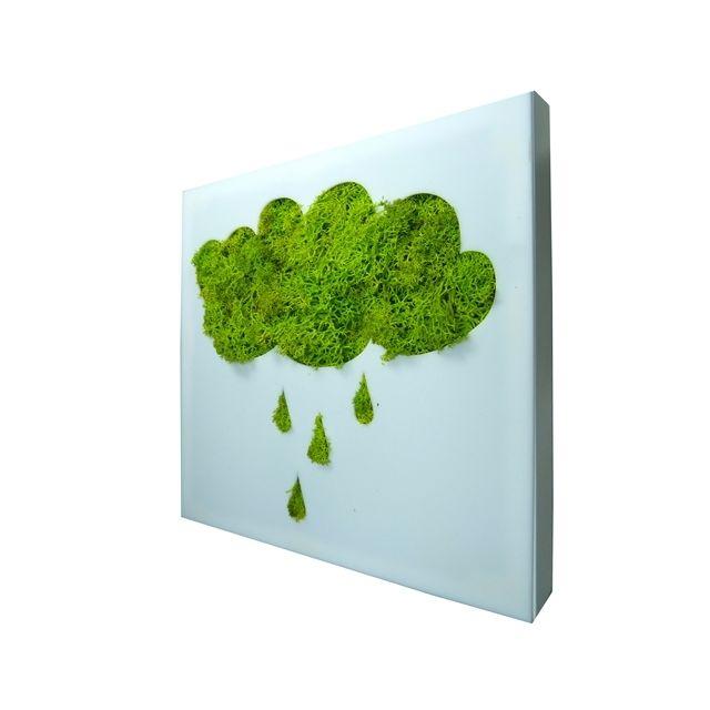 Déco Maison - Tableau cadre plexiglass végétal stabilisé ...