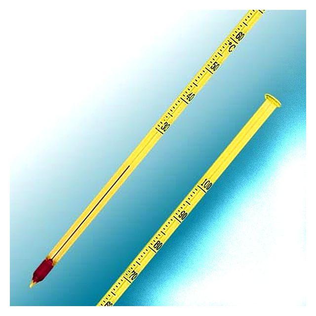 Alla Thermomètre à piquer 25,5 cm en verre 30 à 100°C