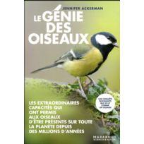 Marabout - Le génie des oiseaux
