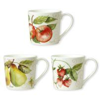 Bruno Evrard - Joli Mug Fruits Boîte de 6 mugs assortis - Joli Mug
