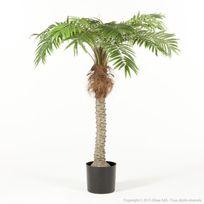 Haveli Republic - Arbre palmier phoenix artificiel en pot tronc coco naturel Tropik