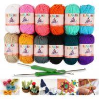 bab7c1f7ad44 Alpexe - 12x50g Pelotes de Laine en Acrylique Multicolores avec 2 Crochets  à Tricoter