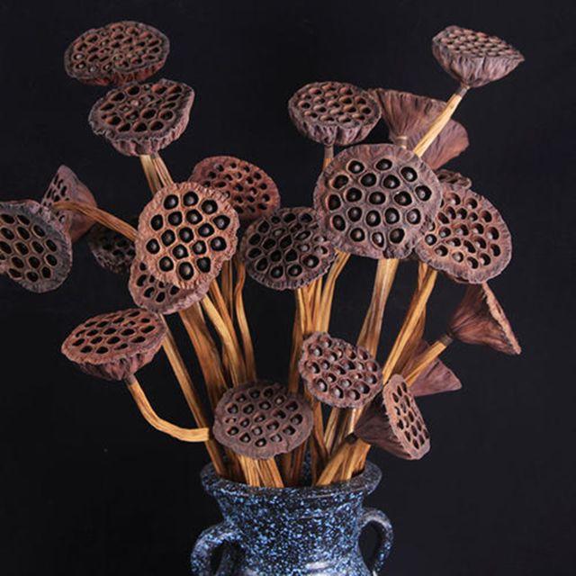 Pomme de Pin Gousse de Lotus fleur feuille Séché