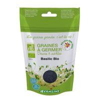 Germline - Graines à germer Basilic