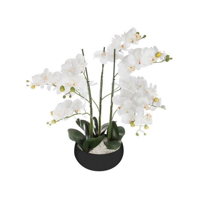 Atmosphera, Createur D'INTERIE Orchidée en pot H. 65 cm noir - Atmosphera