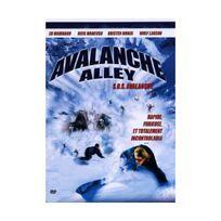 Arcades Video - Avalanche alley