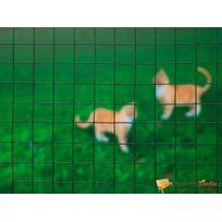 Nature - Grillage en maille carrée acier galvanisé vert 25mm H1xL2,5m