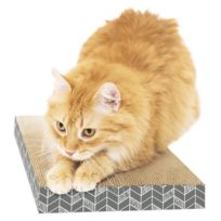 Sportpet Designs - Griffoir ondule en coffret L - 4x25x46cm - Pour chat