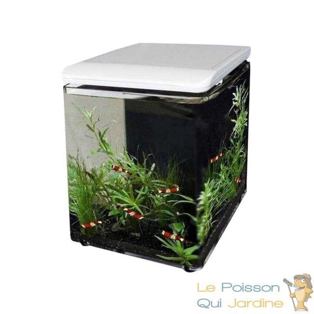Le Poisson Qui Jardine Aquarium design 8 litres blanc complet pour eau douce et eau de mer