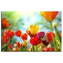 Hexoa - Tableau fleurs tulipes - Fabrication française