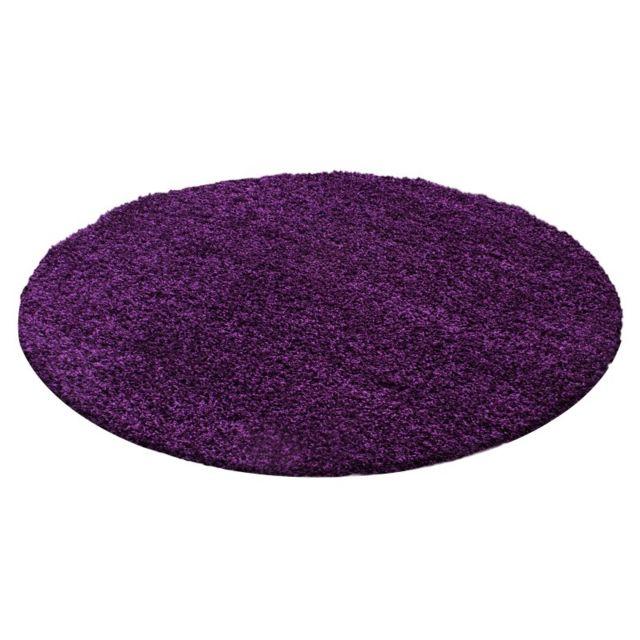 Ayyildiz Tapis - Tapis de salon Shaggy pile longue couleu Violet ...